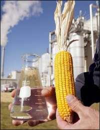 Продовольственная и сельскохозяйственная организация ООН (ФАО) призывает с осторожностью подходить к вопросам разработки и внедрения биотоплива