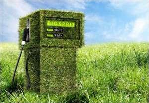 Новосибирские ученые разработали способ получения биотоплива