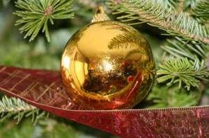 Новогодняя ель. Фото: http://www.budmen.ua