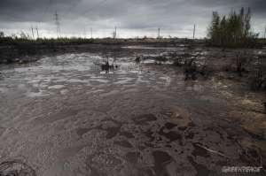 Представители коренных народов Севера требуют запретить нефтегазовое освоение Арктики. Фото: Greenpeace
