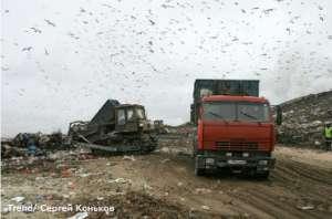 Россия, Санкт-Петербург. Городская свалка бытовых отходов на Волхонском шоссе. Фото: http://www.dp.ru