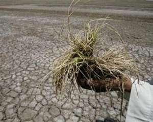 Нехватка водных ресурсов приводит к засухам. Фото: http://www.unmultimedia.org