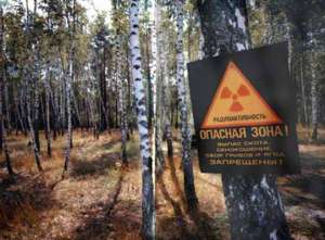 Чернобыльская зона. Фото: http://www.chornobyl.net