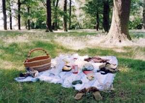 Пикник в лесу. Фото: http://www.interfax.by