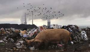 """Фото EPA с сайта """"Голос России"""""""