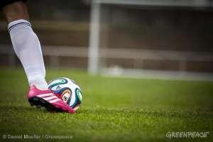 Гринпис призывает компании сохранить игру красивой и безопасной © Daniel Mueller / Greenpeace