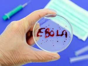 Япония предложила бороться с лихорадкой Эбола антигриппозным препаратом Favipiravir