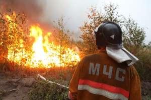 Лесные пожары. Фото: http://vistanews.ru/