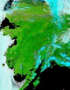 Спутниковый снимок Аляски, сделанный 14 июня 2015 года. Фото: NASA/ NASA/Goddard, Lynn Jenner