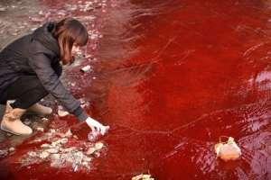 Красная вода в реке. Архив. Фото: http://3rm.info