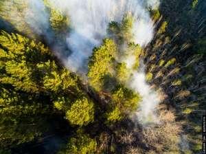 Фото: Greenpeace (http://www.greenpeace.org)