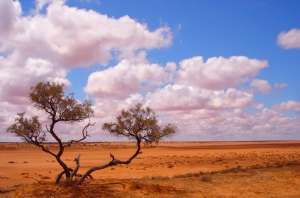 Австралия. Фото: http://turizmy.net