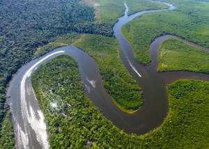 Тропический лес и река Амазонка. © Filipe Frazao | Shutterstock