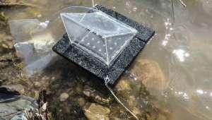 Такое устройство очищает воду быстрее и эффективнее, чем его дорогострящие аналоги, и при этом его производство обходится невероятно дёшево. Фото Qiaoqiang Gan, SUNY Buffalo.