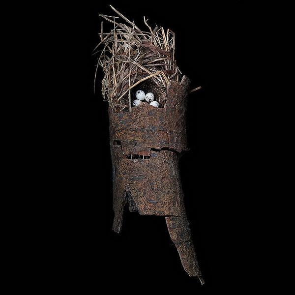 Шедевры природной архитектуры - птичьи гнезда
