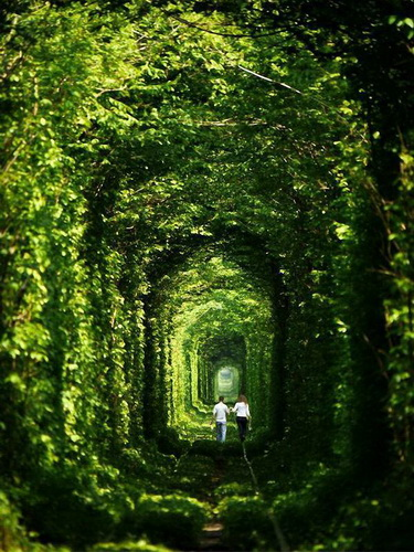 Фотофакт: Самые сюрреалистические пейзажи нашей планеты