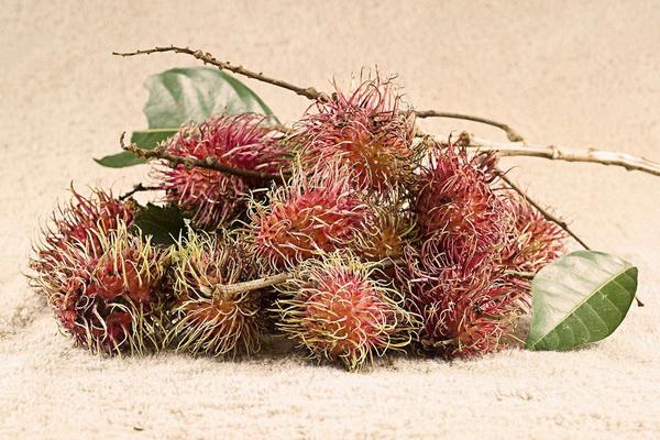 Фотофакт: Экзотические фрукты, которые обязательно стоит попробовать