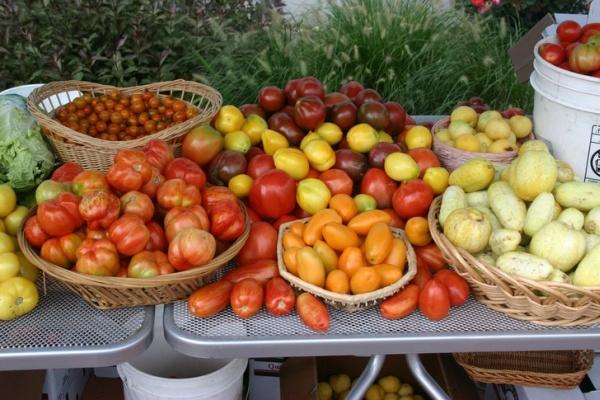 Фотофакт: 10 полезных свойств помидоров