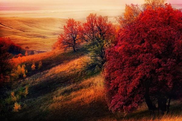 Фотофакт: 15 мест, где осень особенно прекрасна