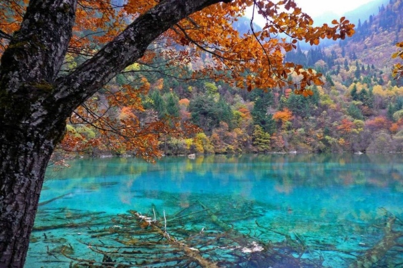 Фотофакт: Двадцать мест на планете, где природа не пожалела красок