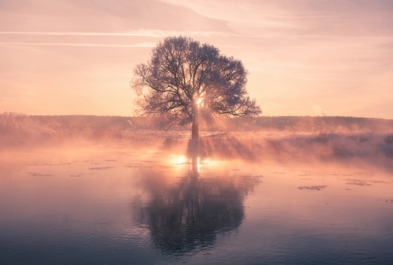Фотофакт: Невероятная красота зимнего утра